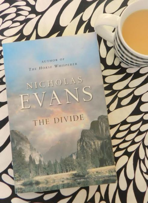 the divide book review