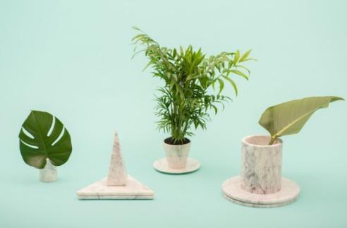 foliage foiliage and more foliage